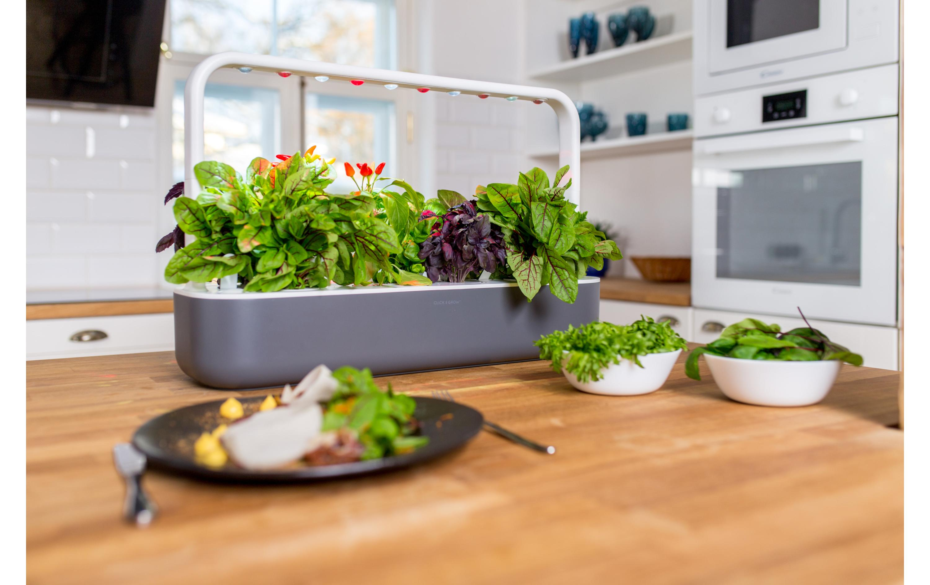 Click and Grow Kräutertopf Smart Garden 17 Dunkelgrau